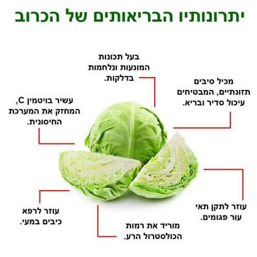 דיאטת הכרוב