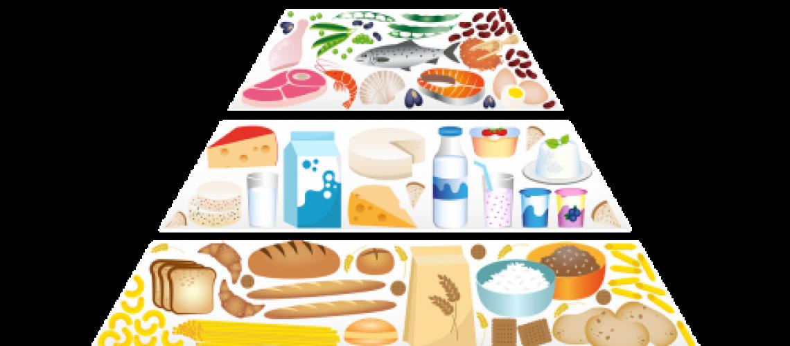 פירמידת המזון של דיאטת הזון